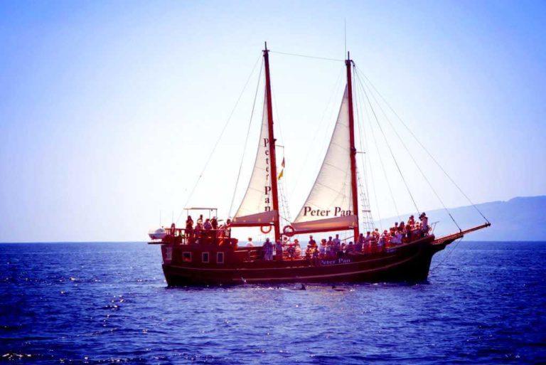 Морские экскурсии на Тенерифе: Питер Пен киты и дельфины